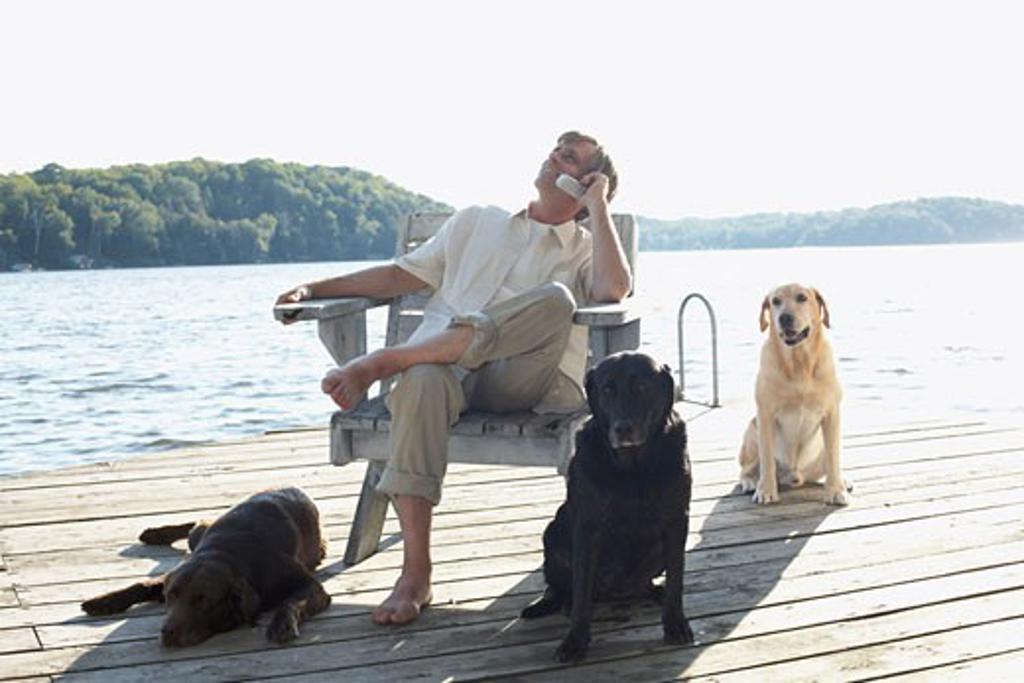 Man on Dock with Dogs, Three Mile Lake, Muskoka, Ontario, Canada    : Stock Photo