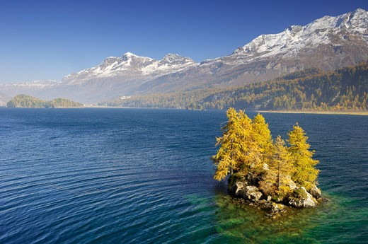 Lake Silser, Engadin, Switzerland    : Stock Photo