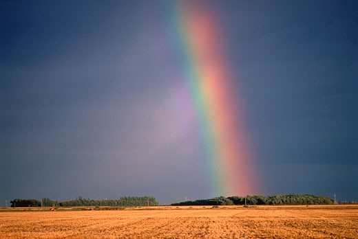 Rainbow over Field Saskatchewan, Canada    : Stock Photo