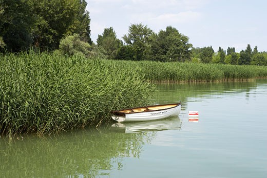 Stock Photo: 1828R-22706 Row Boat by Shore, Lake Balaton, Hungary