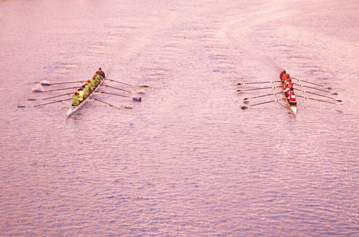 Overview of Rowing Race    : Stock Photo