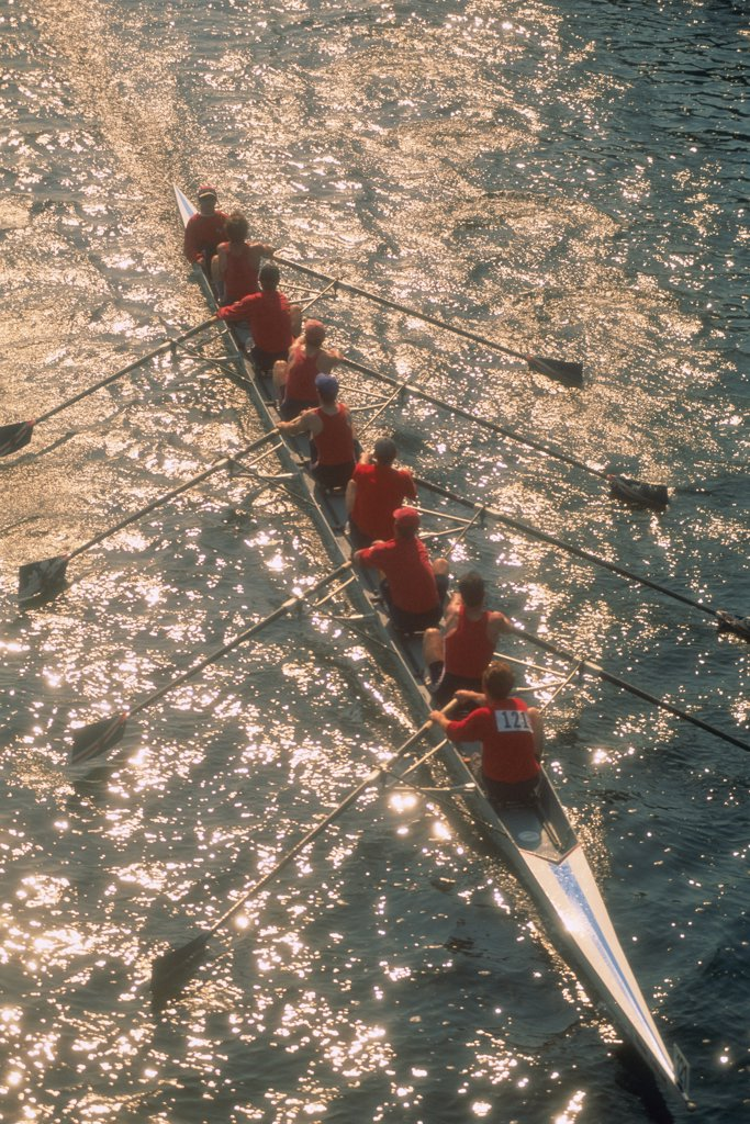Stock Photo: 1828R-2337 Overhead View of Men Rowing Trent Canal, Ontario, Canada