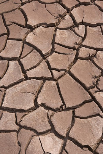 Stock Photo: 1828R-25669 Cracked Mud at Low Tide, Bay of Fundy, Nova Scotia, Canada