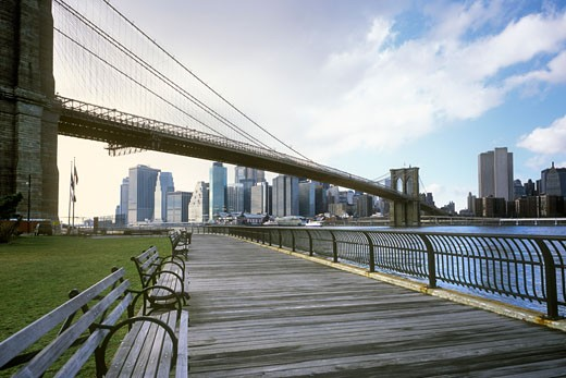 View of Brooklyn Bridge and Manhattan from City Park, New York City, New York, USA    : Stock Photo