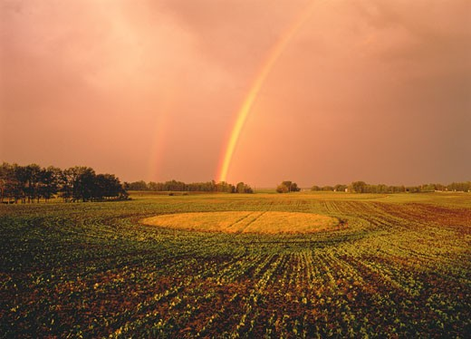 Stock Photo: 1828R-2753 Rainbow over Field Near Sherwood Park Alberta, Canada