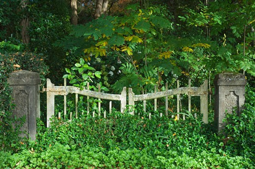 Stock Photo: 1828R-27956 Gate, Stratford, North Island, New Zealand