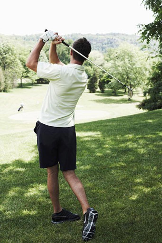 Man Golfing    : Stock Photo