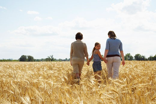 Stock Photo: 1828R-33849 Grandmother, Mother and Daughter Walking in Grain Field