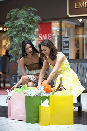 Women Shopping    : Stock Photo
