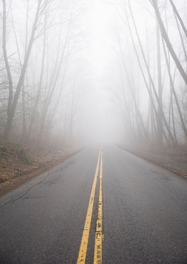 Stock Photo: 1828R-34258 Road in Fog, Burnaby, British Columbia, Canada