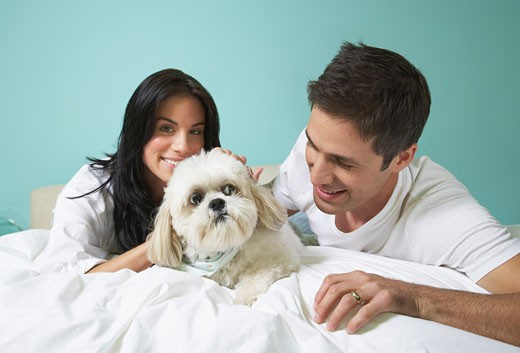 Stock Photo: 1828R-38413 Couple with Dog on Bed