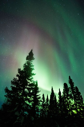 Stock Photo: 1828R-39233 Northern Lights, Wapusk National Park, Manitoba, Canada