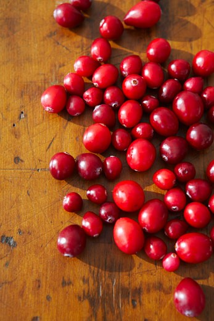 Stock Photo: 1828R-39293 Cranberries