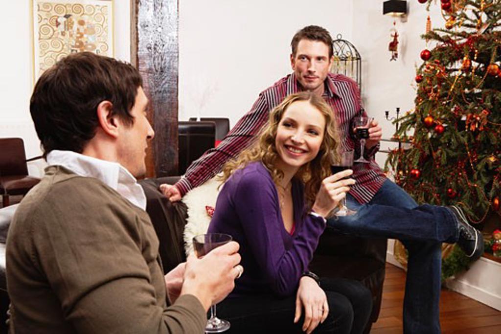 Friends Celebrating Christmas    : Stock Photo