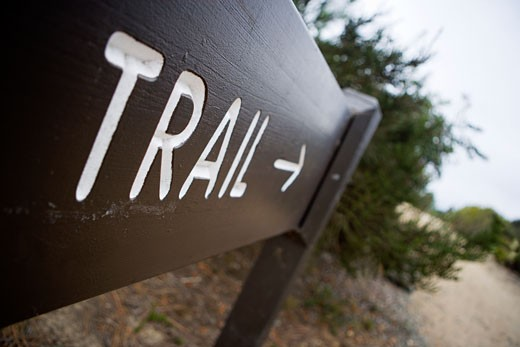 Stock Photo: 1828R-41572 Trail Sign, Torrey Pines State Park, La Jolla, California, USA
