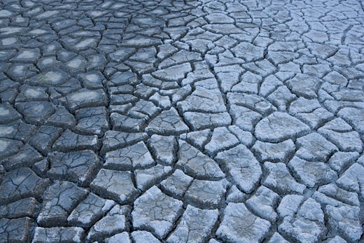 Stock Photo: 1828R-42270 Cracked Mud, Salar de Surire Natural Monument, Lauca Biosphere Reserve, Chile