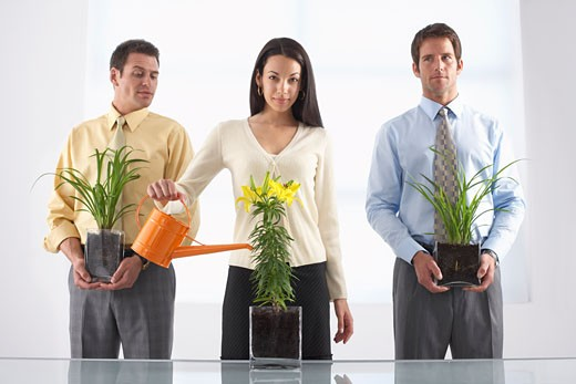 Businesspeople and Plants    : Stock Photo