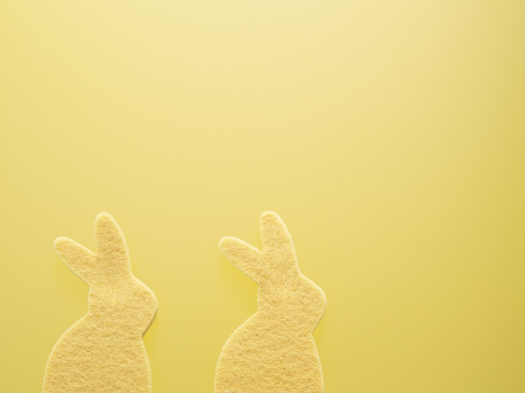 Stock Photo: 1828R-45151 Two Yellow Easter Bunnies Sponges on a Yellow Background