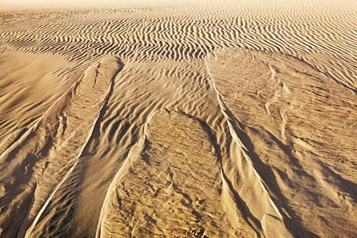 Stock Photo: 1828R-46484 Sand Dune,Namib Desert Namibia, Africa
