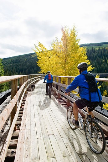 Stock Photo: 1828R-46581 Mountain Bikers on Bellevue Trestle, Kettle Valley Rail Trail Near Kelowna, British Columbia, Canada