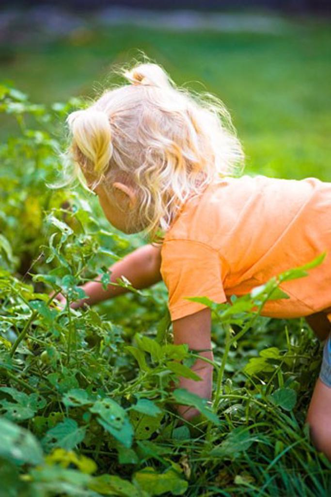 Girl in Garden, Encinitas, California, USA    : Stock Photo