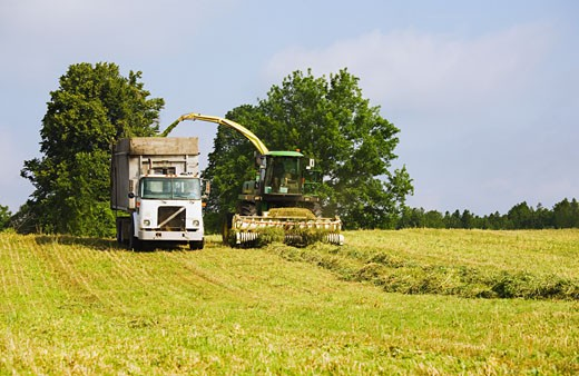 Stock Photo: 1828R-48209 Hay Being Harvested from Field near Tweed, Ontario, Canada