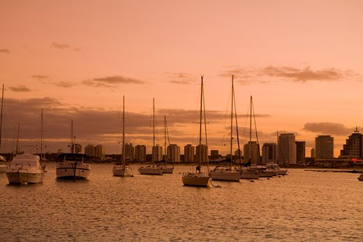 Sailboats at Sunset, Punta del Este, Uruguay    : Stock Photo