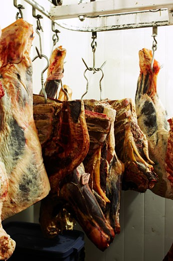Meat Hanging in Butcher Shop : Stock Photo