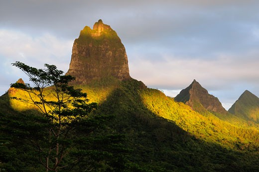 Stock Photo: 1828R-49557 Mountain Peak and Opunohu Valley, Moorea, French Polynesia
