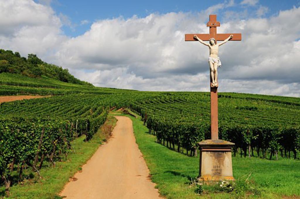 Statue of Jesus Christ in Vineyard, Kaysersberg, Haut-Rhin, Alsace, France    : Stock Photo