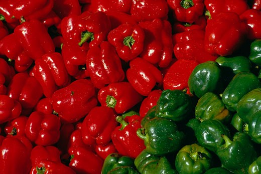 Stock Photo: 1828R-50721 Red and Green Peppers