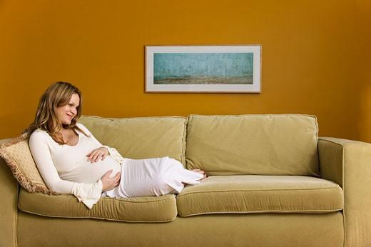 Portrait of Pregnant Woman    : Stock Photo