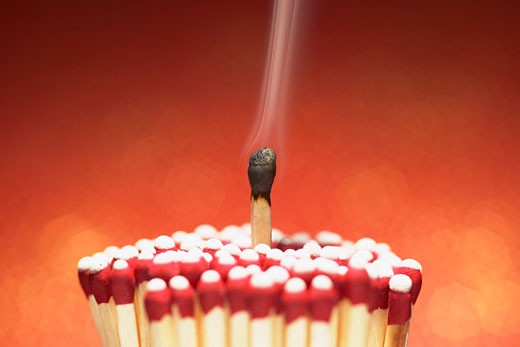 Stock Photo: 1828R-51138 Burnt Match with Cluster of Unlit Matches