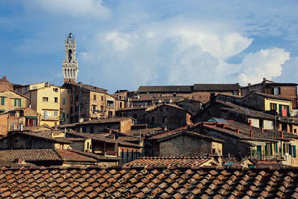 Stock Photo: 1828R-51825 Torre del Mangia, Siena, Tuscany, Italy