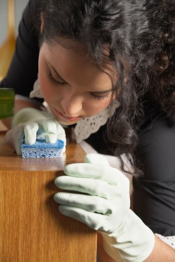 Stock Photo: 1828R-52258 Maid Cleaning