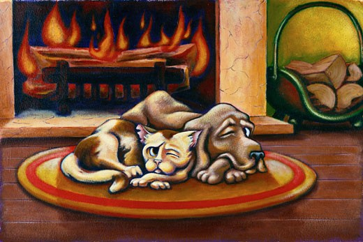Illustration of Dog and Cat Sleeping in Front of Fireplace With One Eye Open    : Stock Photo