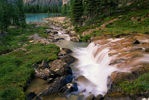 Stock Photo: 1828R-5253 Opabin Plateau and Waterfall, Yoho National Park, British Columbia, Canada