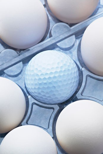 Stock Photo: 1828R-53815 Eggs in Carton With Golf Ball
