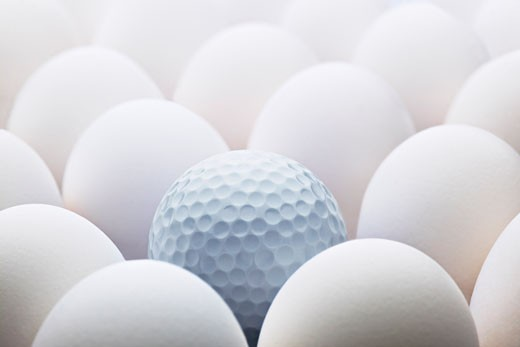Stock Photo: 1828R-53816 Eggs and Golf Ball