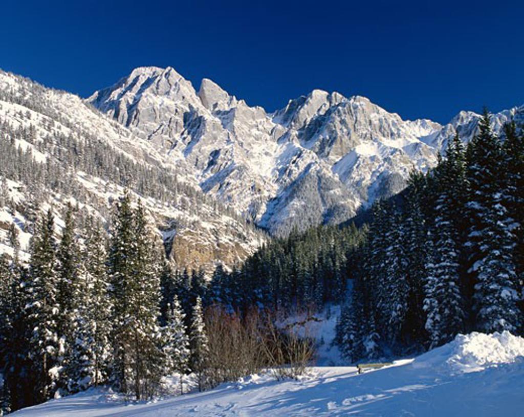 Stock Photo: 1828R-56025 Rocky Mountains, Kananaskis Country, Alberta, Canada