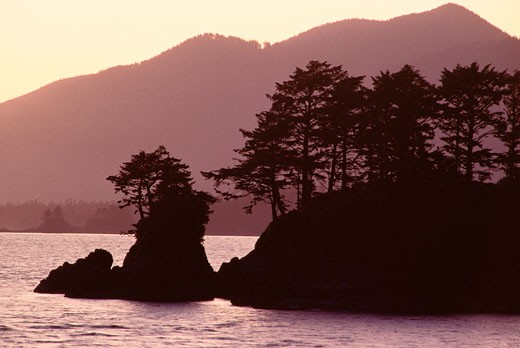 Clayoquot Sound, Coastal British Columbia, Canada    : Stock Photo
