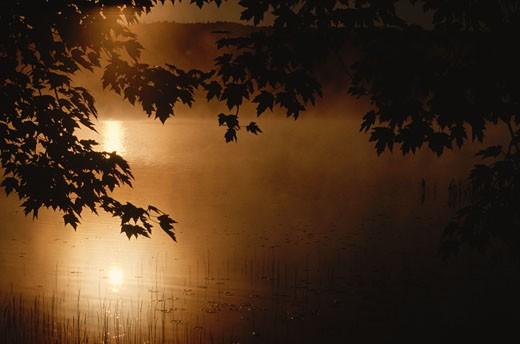 Sunrise, Kingston Creek, Kingston, New Brunswick, Canada    : Stock Photo