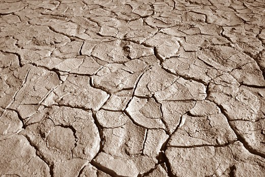 Cracked Earth    : Stock Photo