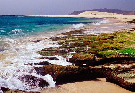 Praia da Cruz, Boa Vista Island, Cape Verde    : Stock Photo