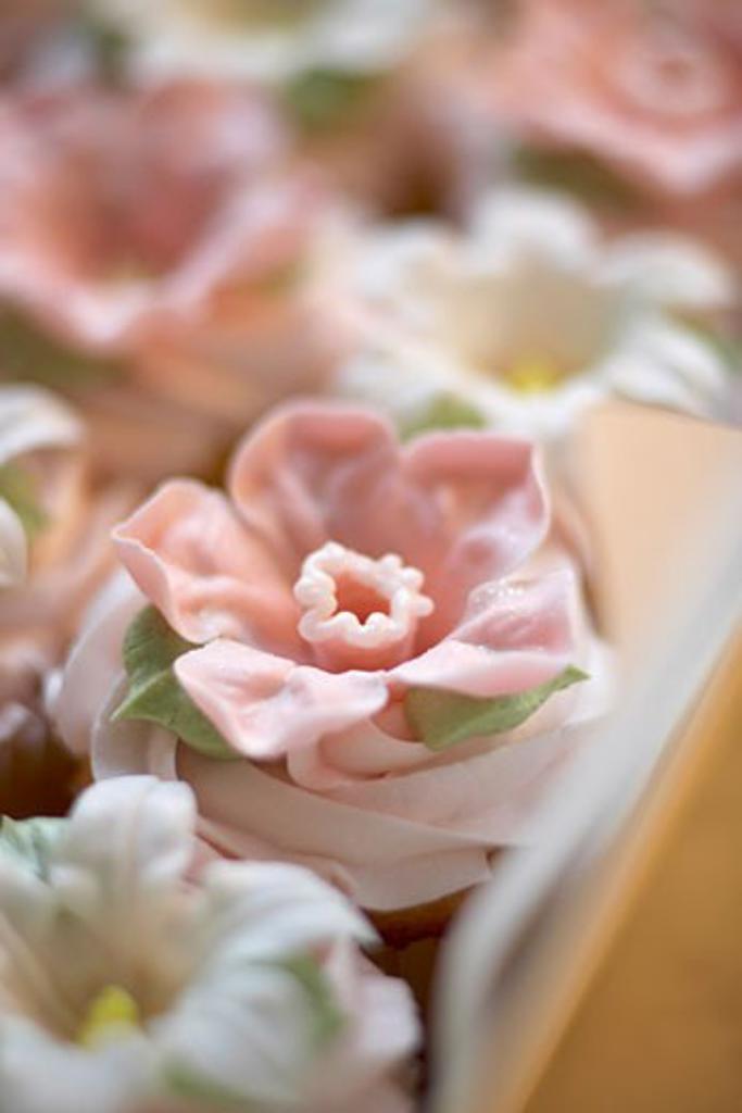 Stock Photo: 1828R-60320 Cupcakes