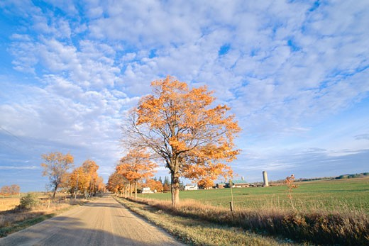 Stock Photo: 1828R-6152 Farmland and Dirt Road Milton, Ontario, Canada