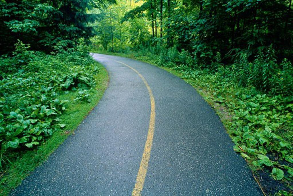 Stock Photo: 1828R-6179 Paved Path Through Edwards Gardens, Toronto, Ontario, Canada