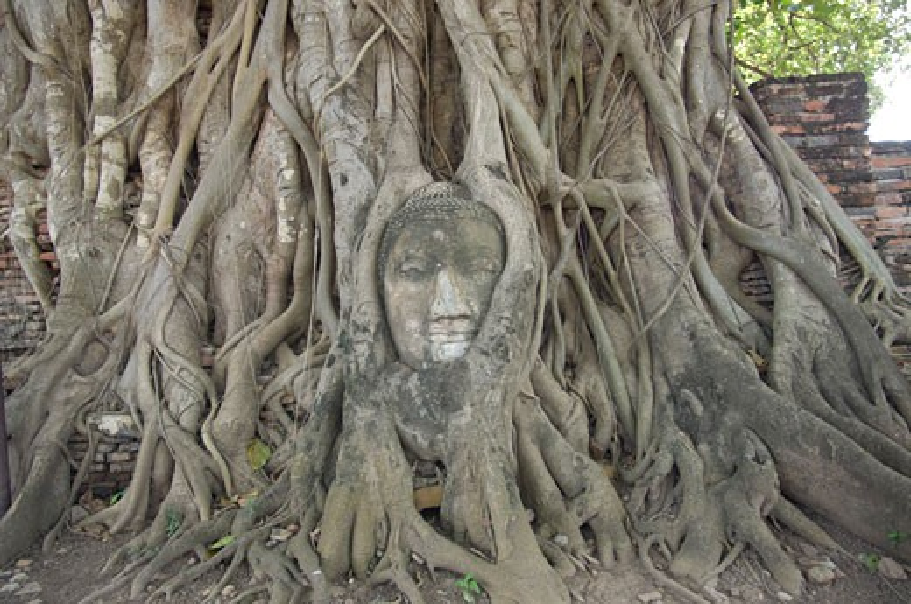 Carving, Ayutthaya, Thailand : Stock Photo