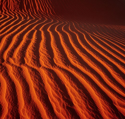 Stock Photo: 1828R-64379 Sand Dunes, Simpson Desert, Australia