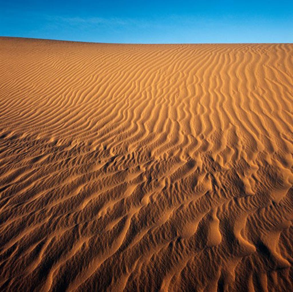 Sand Dunes, Lake Mungo, Australia : Stock Photo